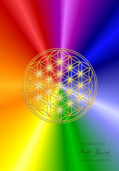 Blume des Lebens rainbow - Postkarte VS - by atalantes spirit