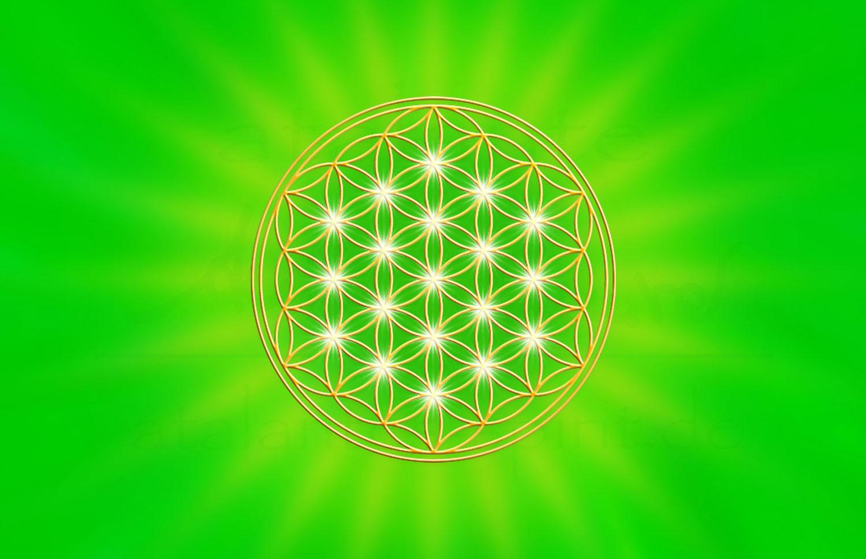 Kraft Der Farben Die Bedeutung Der Farbe Grün Atalantes Spirit