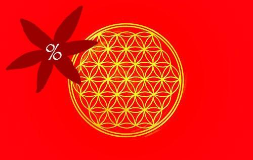 Blume des Lebens Energiekärtchen | Detailansicht Vorderseite Wurzelchakra rot | II. Wahl | designed by atalantes spirit®