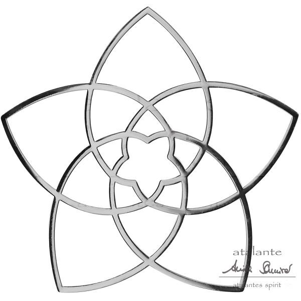 Metall-Aufkleber SILBER | Venusblume EnerChrom®