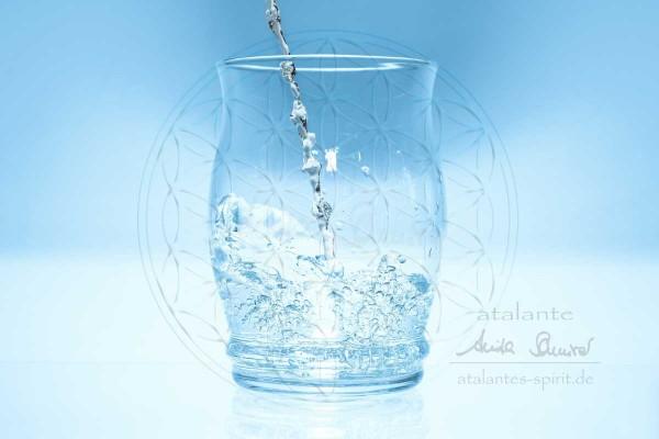 atalantes-spirit-Wasserbelebung-mit-der-Blume-des-Lebens-Energetisieren-leicht-gemacht