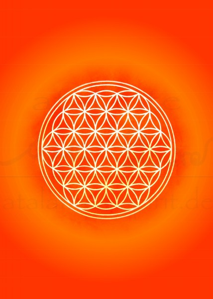 Blume des Lebens Postkarten | Motiv: orange | designed by atalantes spirit®
