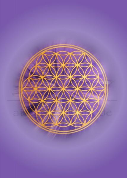 Blume des Lebens Postkarten | Motiv: Kronenchakra - violett | designed by atalantes spirit®